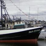 Sea Star (StreetView)