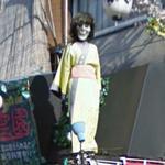 Stylized Geisha (StreetView)