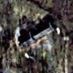 Charles S. Dutton's House (Google Maps)