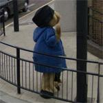 Paddington Bear (StreetView)
