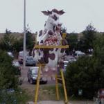 Funny Cow (StreetView)