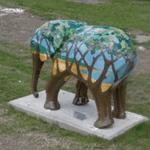 Ellie Goes to Holkham by Paul Zawadski (Go Elephants) (StreetView)