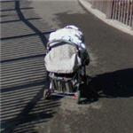 Screw everyone else, I'm gonna park my stroller in the middle of the path (StreetView)