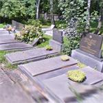 Google Graveyard View