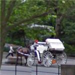 Central Park carriage ride (StreetView)