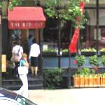 The Red Cat (StreetView)