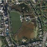 Ueno Park (Google Maps)