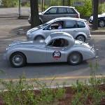 Jaguar XK120 (Mille Miglia 2009) (StreetView)
