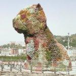 'Puppy' by Jeff Koons (StreetView)