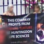 Protest in London (StreetView)