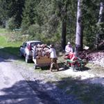 Cutting Firewood (StreetView)
