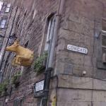 Cow pub (StreetView)