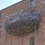 'Avam Nest' by David Hess (StreetView)