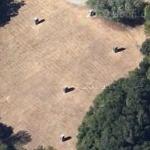 'Open Field Vertical Elevations' by Richard Serra (Google Maps)