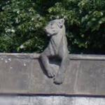 Animal Wall (StreetView)